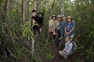 Watching the Indri in the forests of Madagascar