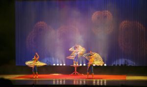 Chinese Acrobat show -