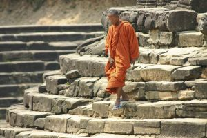 Young monk -